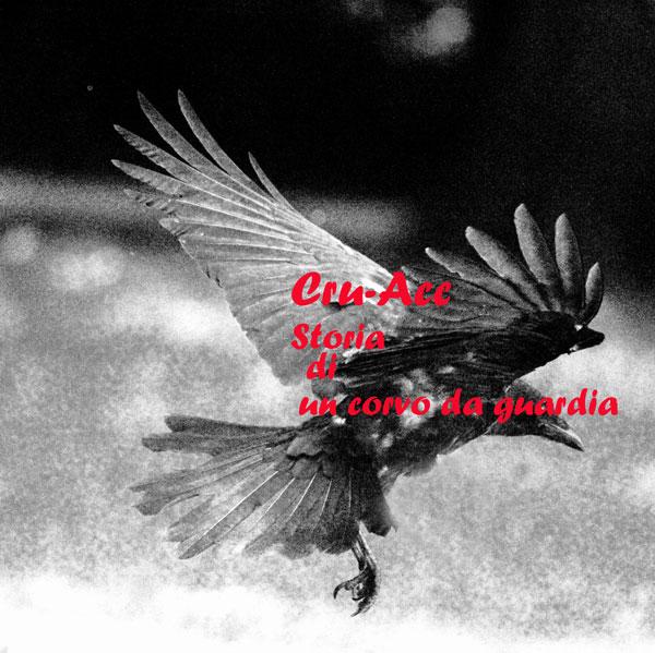 Il corvo in volo