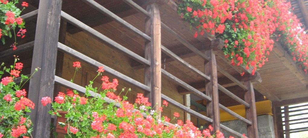 Palcone fiorito