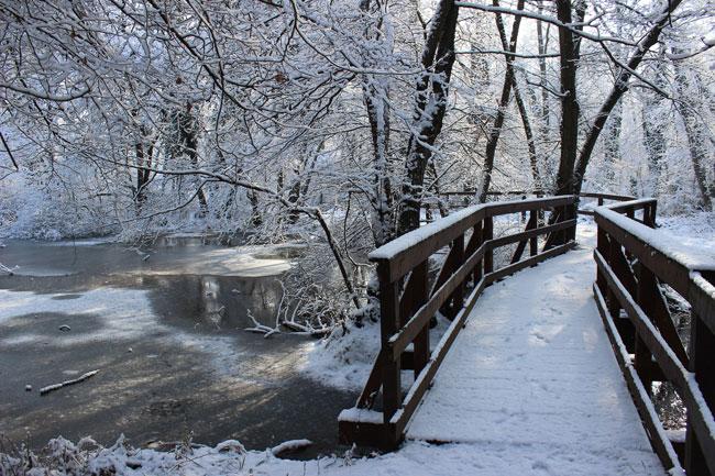 Neve, ponticello