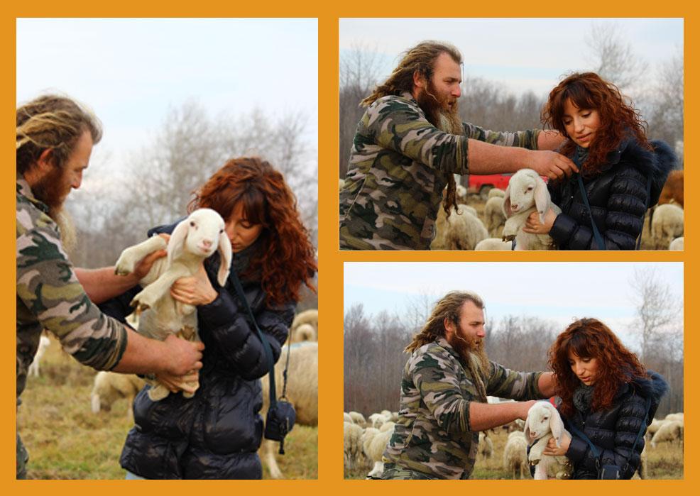 Alex, una ricercatrice,  un agnello