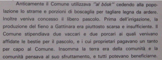 Parte di libro su Gattinara