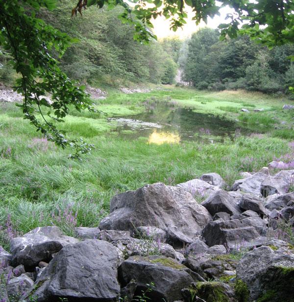 Invaso inferiore del laghetto di Sant'Agostino.