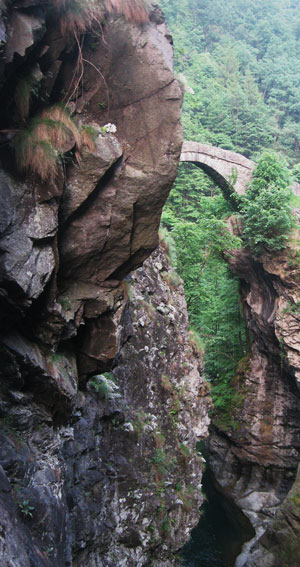 Torrente, ponte