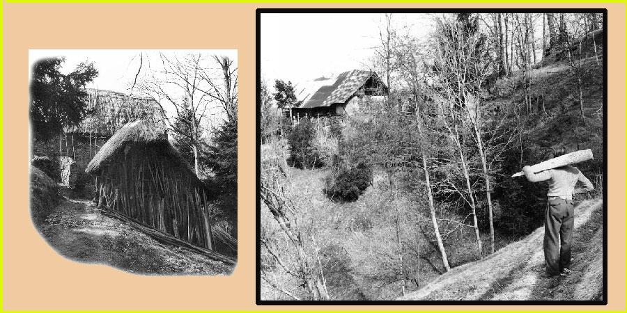 Fotocomposizione con immagini del secolo scorso.