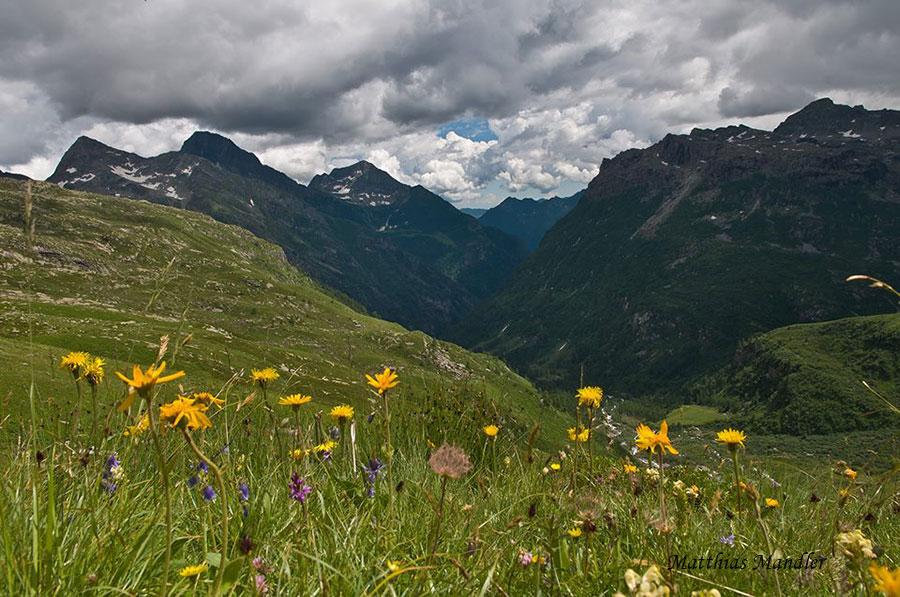 Sentieri fioriti, Valsesia