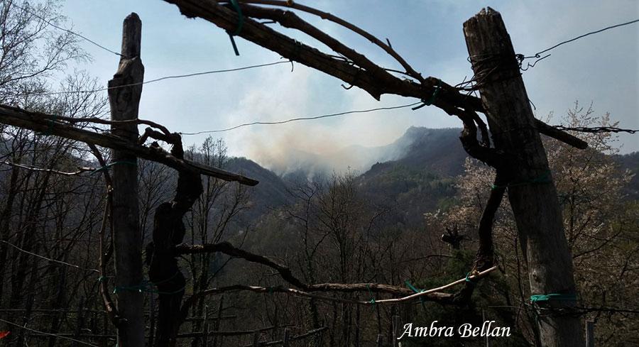 Da uno scampolo di vigna, incendio verso la pietra Croana - Fine marzo 2019 (Foto: Ambra Bellan)
