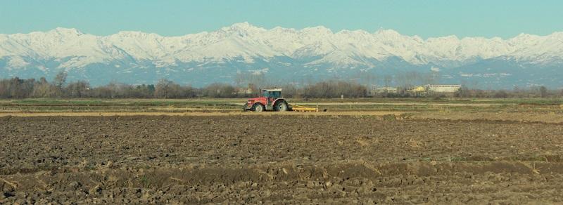 A novembre la risaia è pronta per l'aratura. Un tempo si dissodava il terreno in primavera affinché in inverno riposasse sotto la neve. Ora invece la superficie utilizzata dalle aziende è talmente estesa che la terra viene già rivoltata in autunno. La neve, poi, in questi ultimi tempi è solo un lontano ricordo…