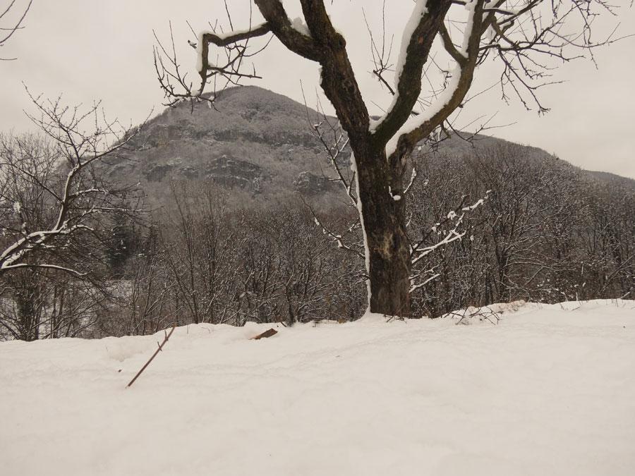 E' caduta la neve
