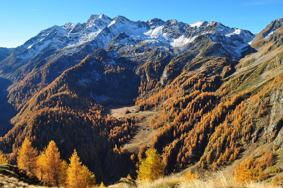 Alpe Larecchio tra i monti della Valsesia